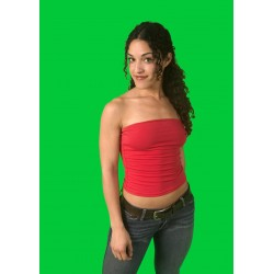 10 foot wide GREEN SCREEN CHROMA KEY fabric by the foot